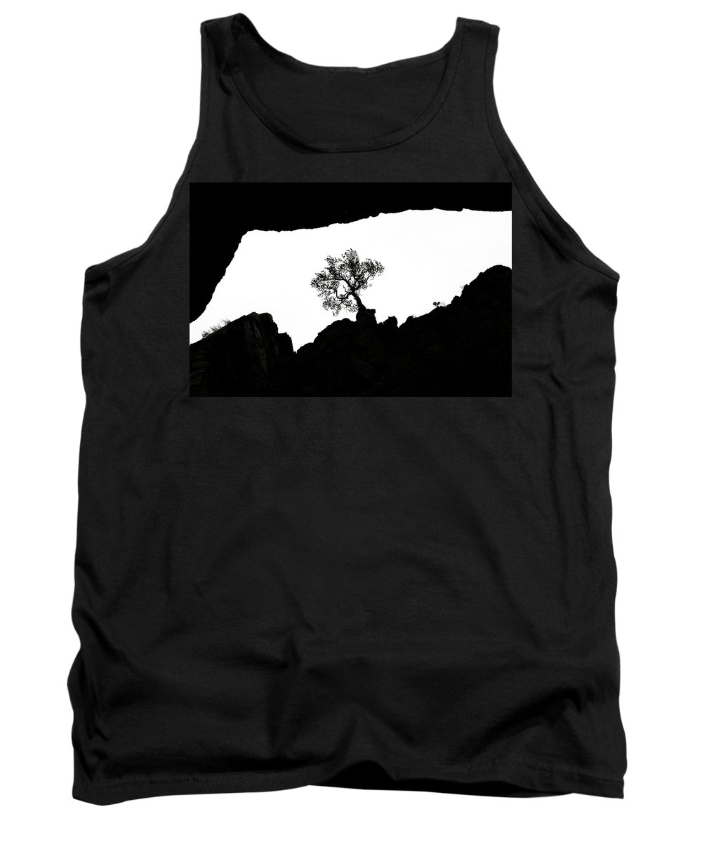 Tree Tank Top featuring the photograph Looking Up 2 by Marilyn Hunt