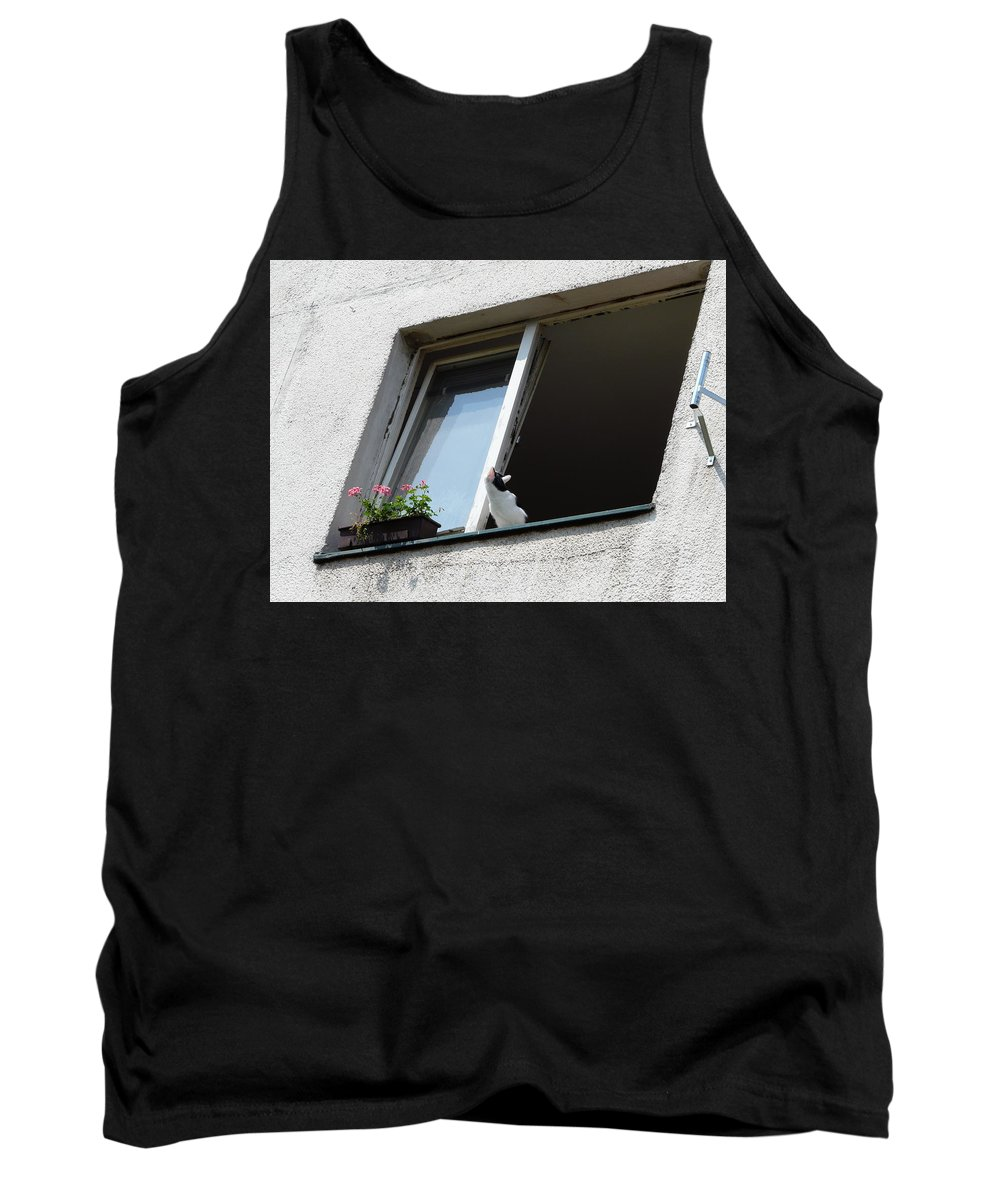 Cat Tank Top featuring the photograph Looking Up by Valerie Ornstein