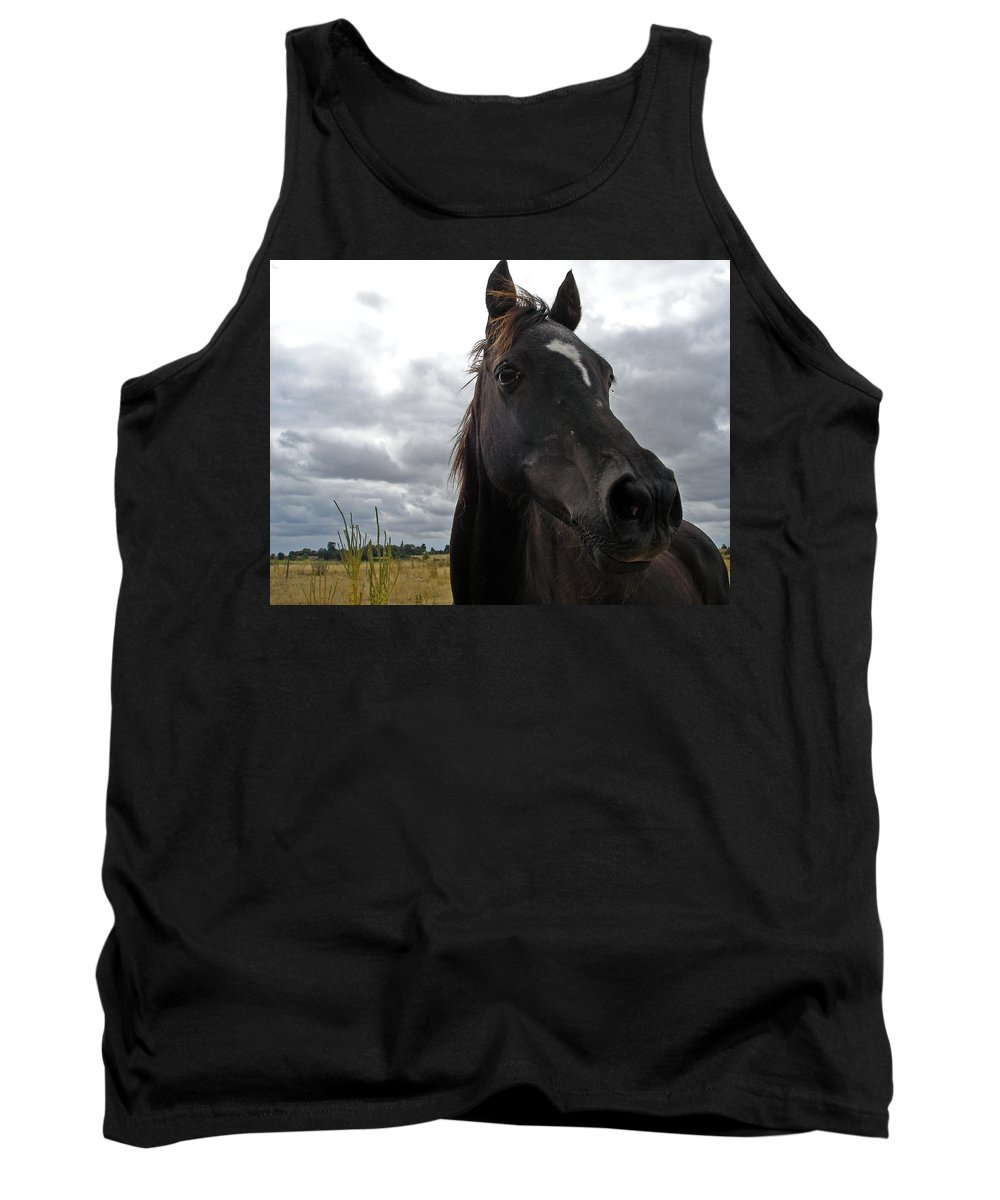 Black Beauty Tank Top featuring the photograph Midnight Melody by Susan Baker