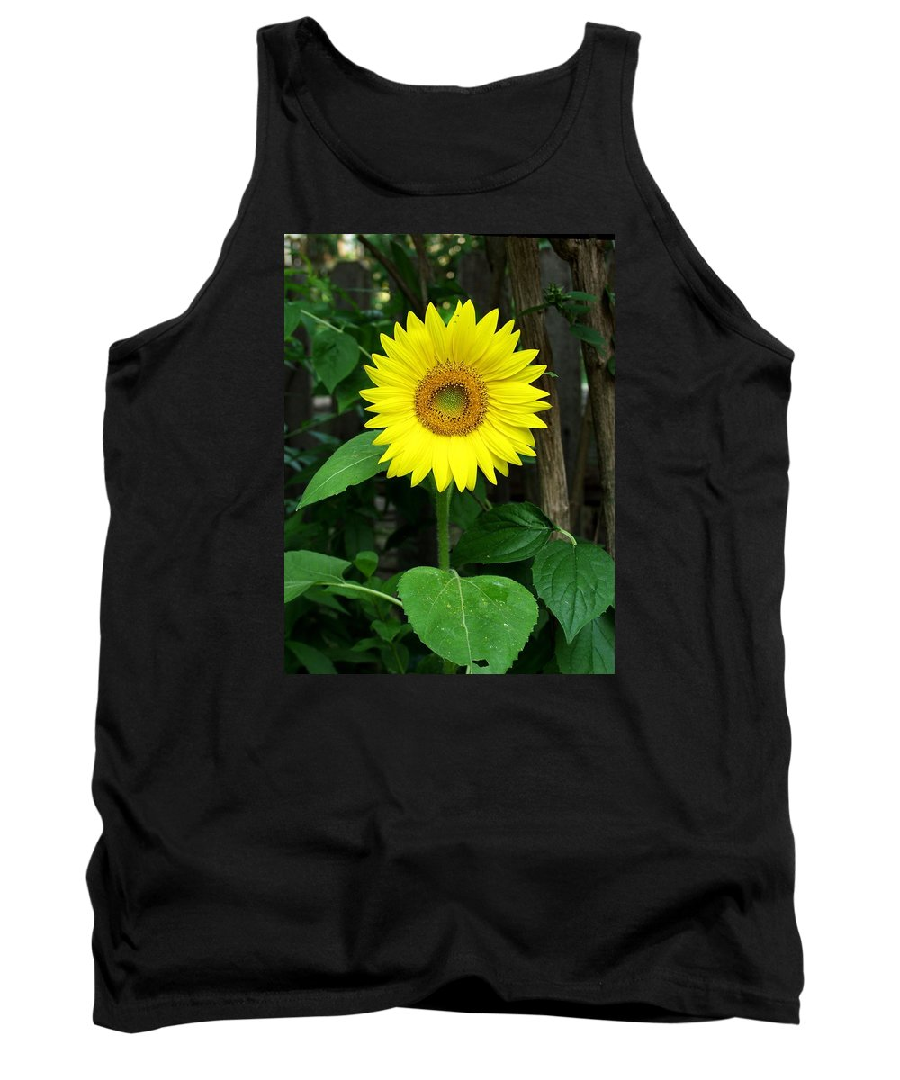 Yellow Tank Top featuring the photograph Miss Sunshine by Carol Sweetwood