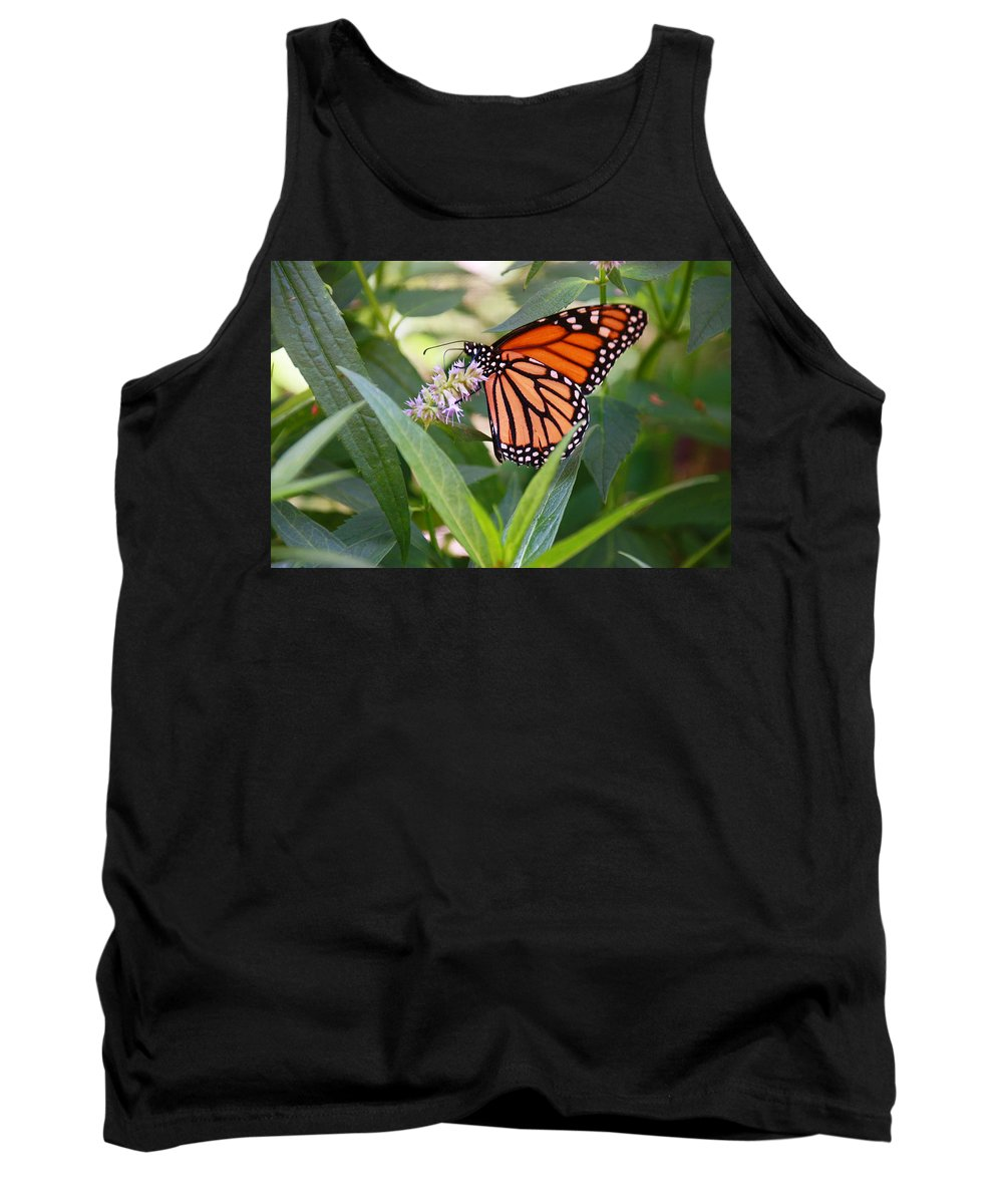 Orange Tank Top featuring the photograph Monarch Butterfly 3 by Allen Beatty