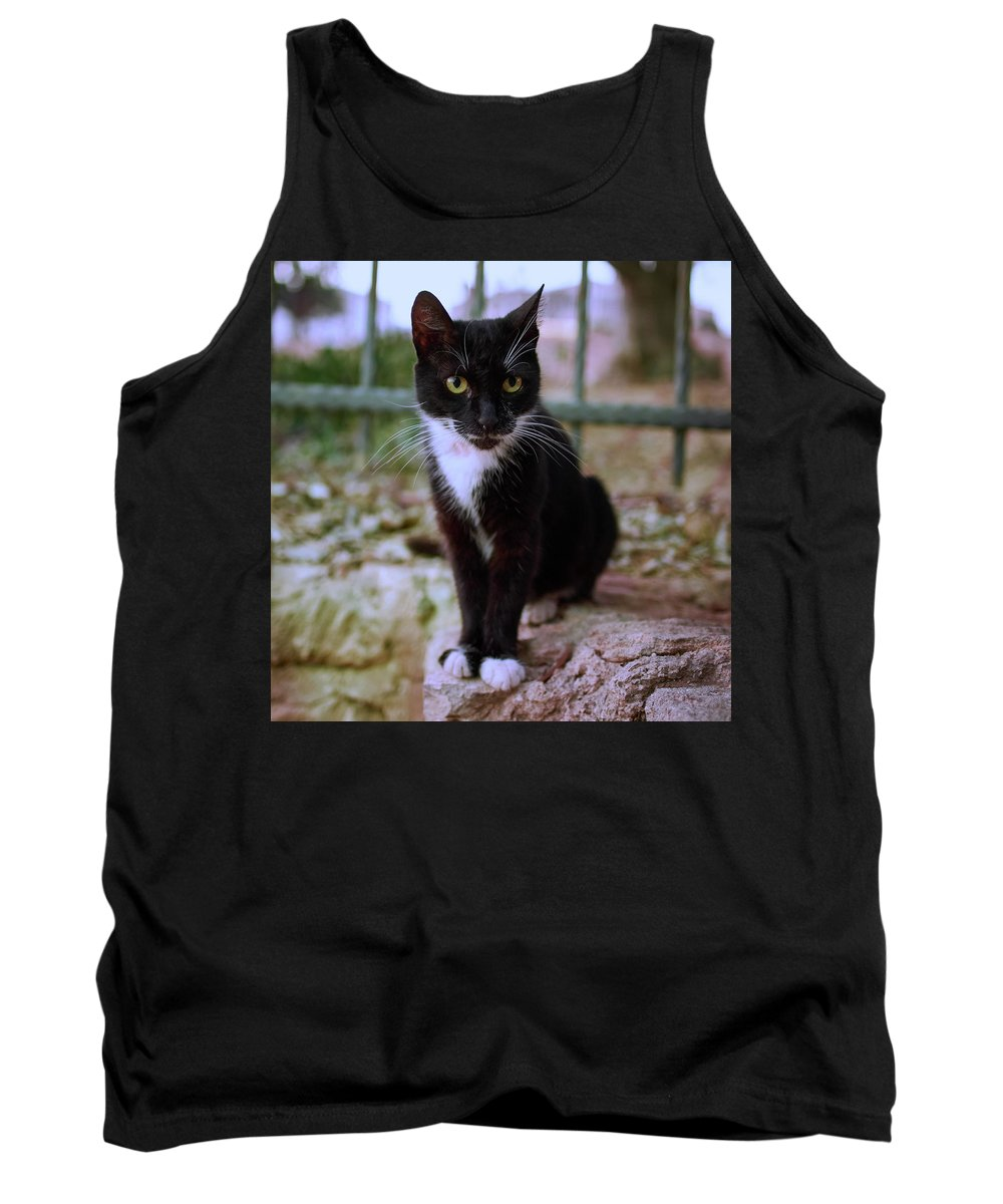 Finland Tank Top featuring the photograph Monastery Cat by Jouko Lehto