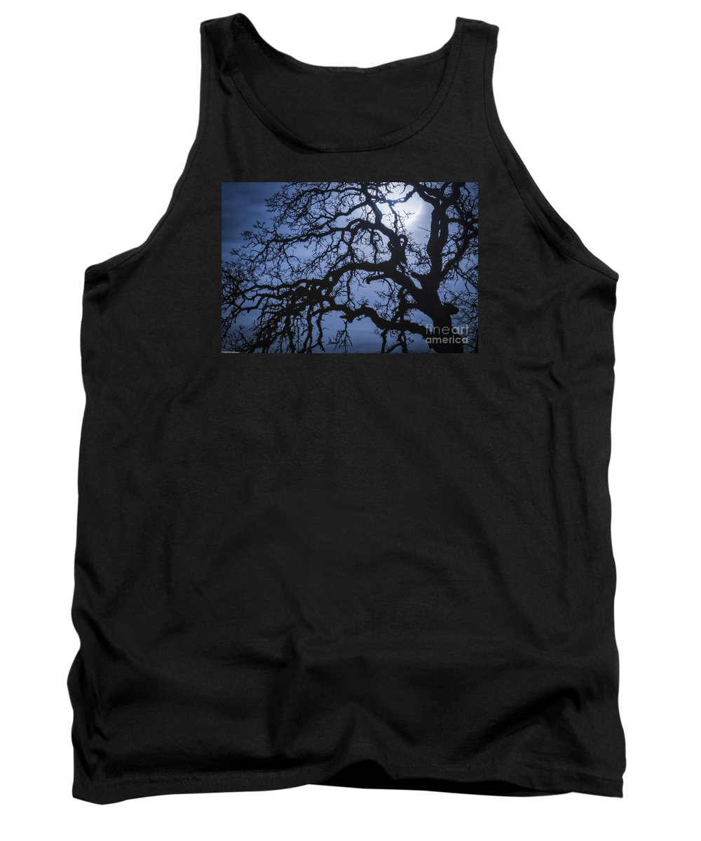 Moonlight And Oak Tree Tank Top featuring the photograph Moonlight And Oak Tree by Mitch Shindelbower