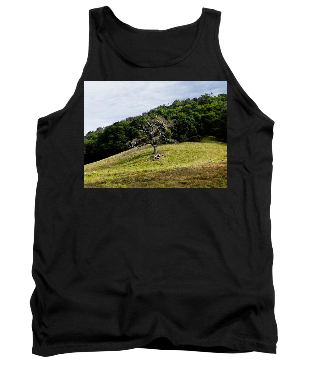 Trees Tank Top featuring the photograph Morgan Territory Oak by Karen W Meyer