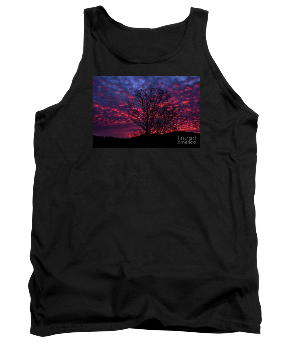 Sky Tank Top featuring the photograph Morning Glory 1 by Mim White