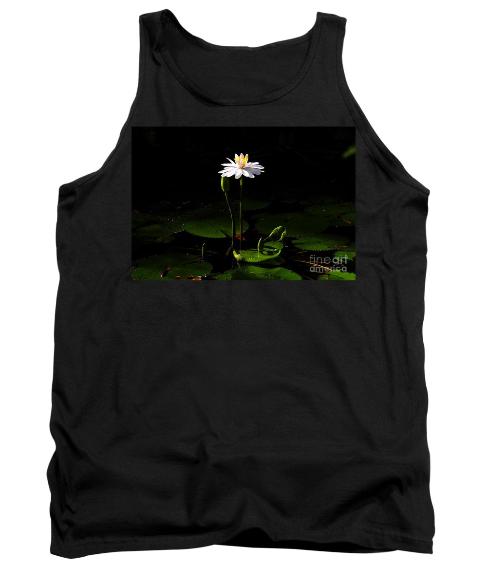 Morning Tank Top featuring the photograph Morning Glory by David Lee Thompson
