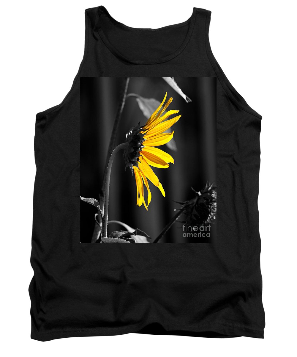 Clay Tank Top featuring the photograph Morning Sun by Clayton Bruster
