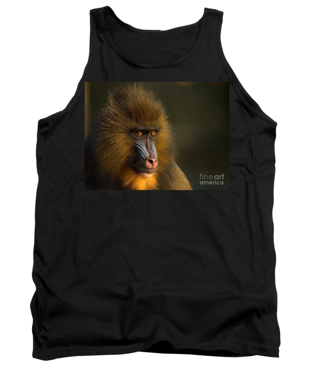 Wildlife Tank Top featuring the photograph Mother's Finest by Jacky Gerritsen