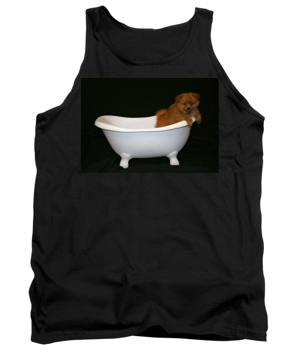 Puppy Tank Top featuring the photograph Mr. Fox by Tina Meador