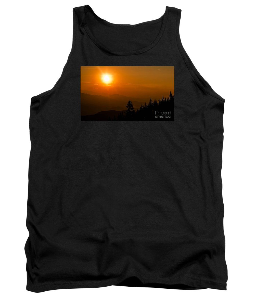 Sun Tank Top featuring the photograph Natural World by Johannes Laschon