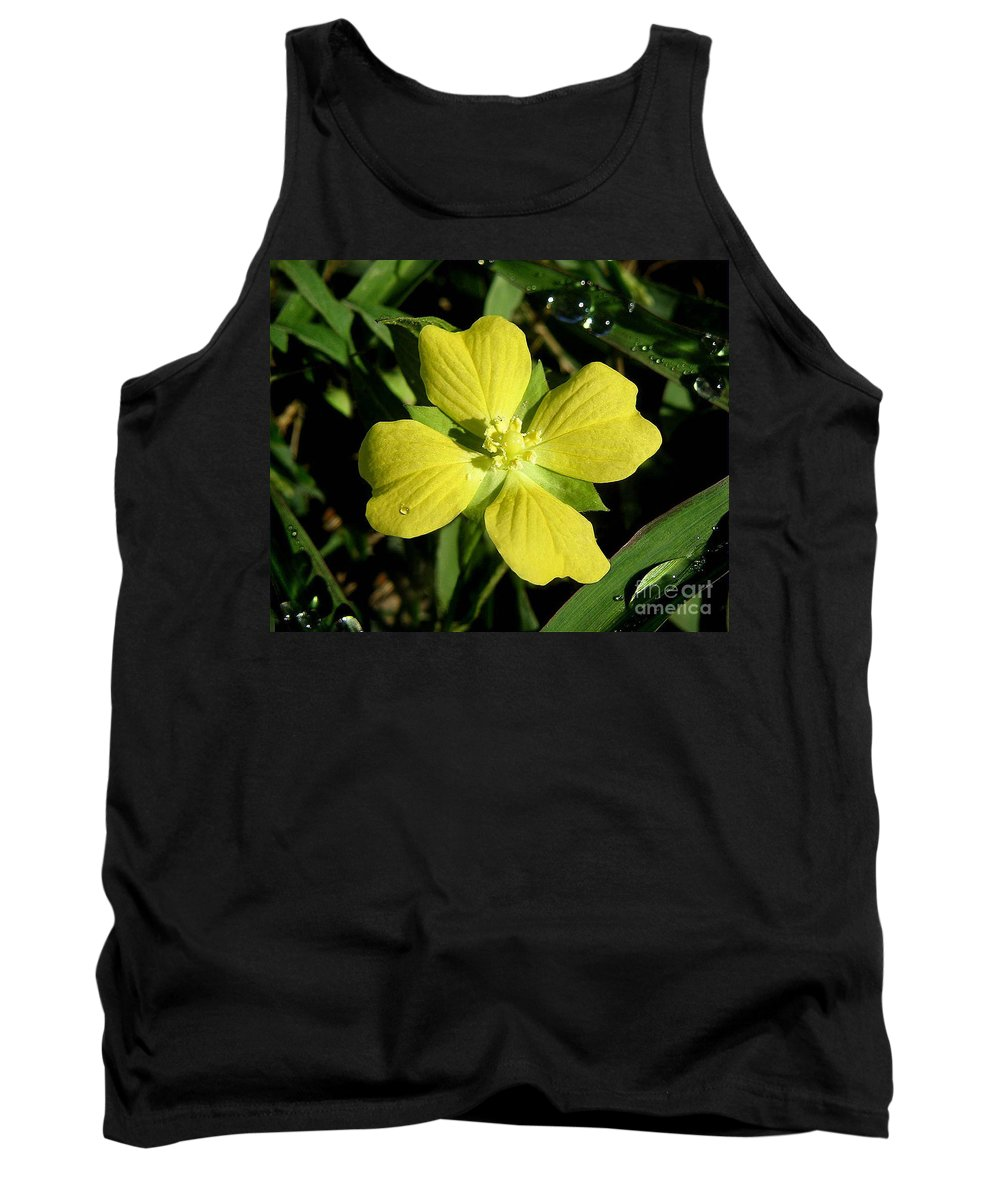 Nature Tank Top featuring the photograph Nature In The Wild - Kissed By The Sun by Lucyna A M Green