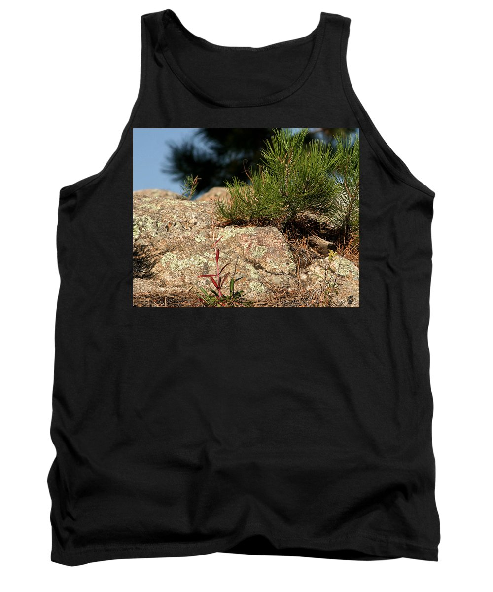 Attraction Tank Top featuring the photograph New Growth by Mike Oistad