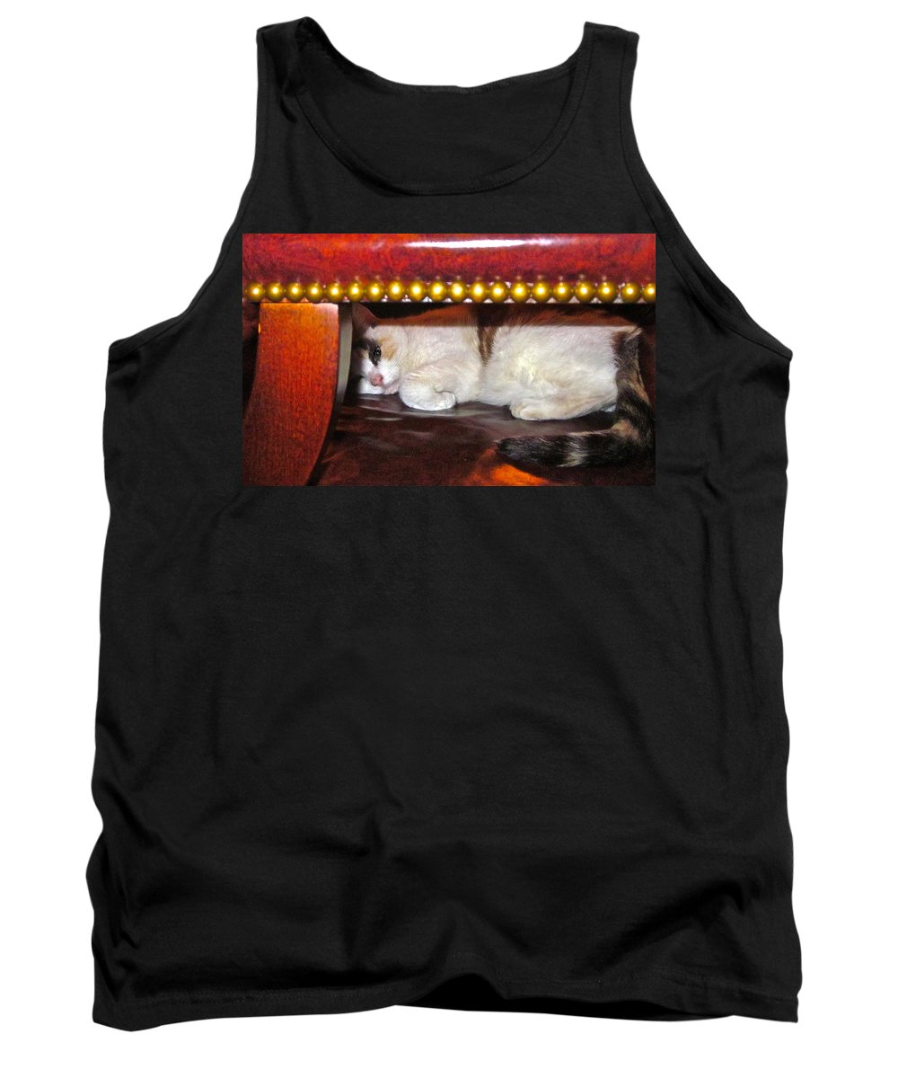 Cat Photograph Tank Top featuring the photograph No Cameras Please by Gwyn Newcombe