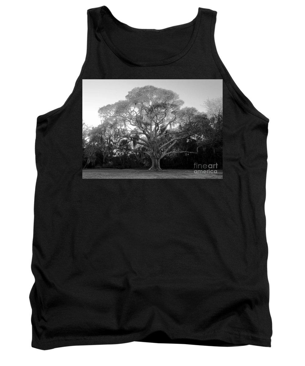 Oak Tree Tank Top featuring the photograph Oak Tree by David Lee Thompson