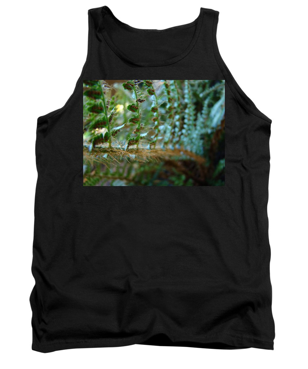 Fern Tank Top featuring the photograph Office Art Fern Green Forest Ferns Giclee Prints Baslee Troutman by Baslee Troutman