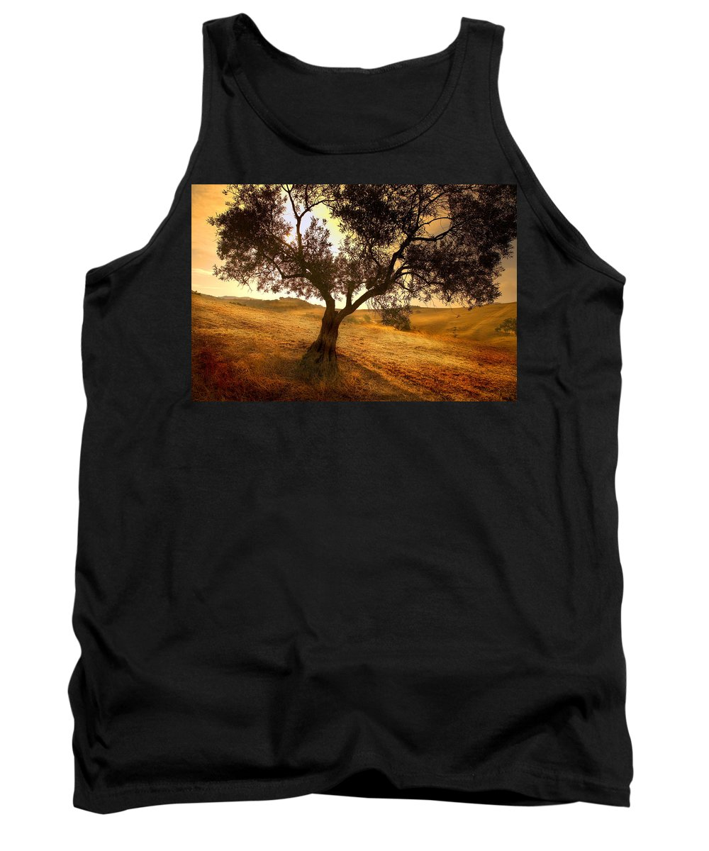 Landscape Tank Top featuring the photograph Olive Tree Dawn by Mal Bray