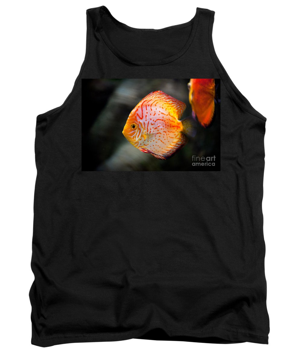 Zoo Tank Top featuring the photograph Orange Aquarium Fish In Zoo by Arletta Cwalina
