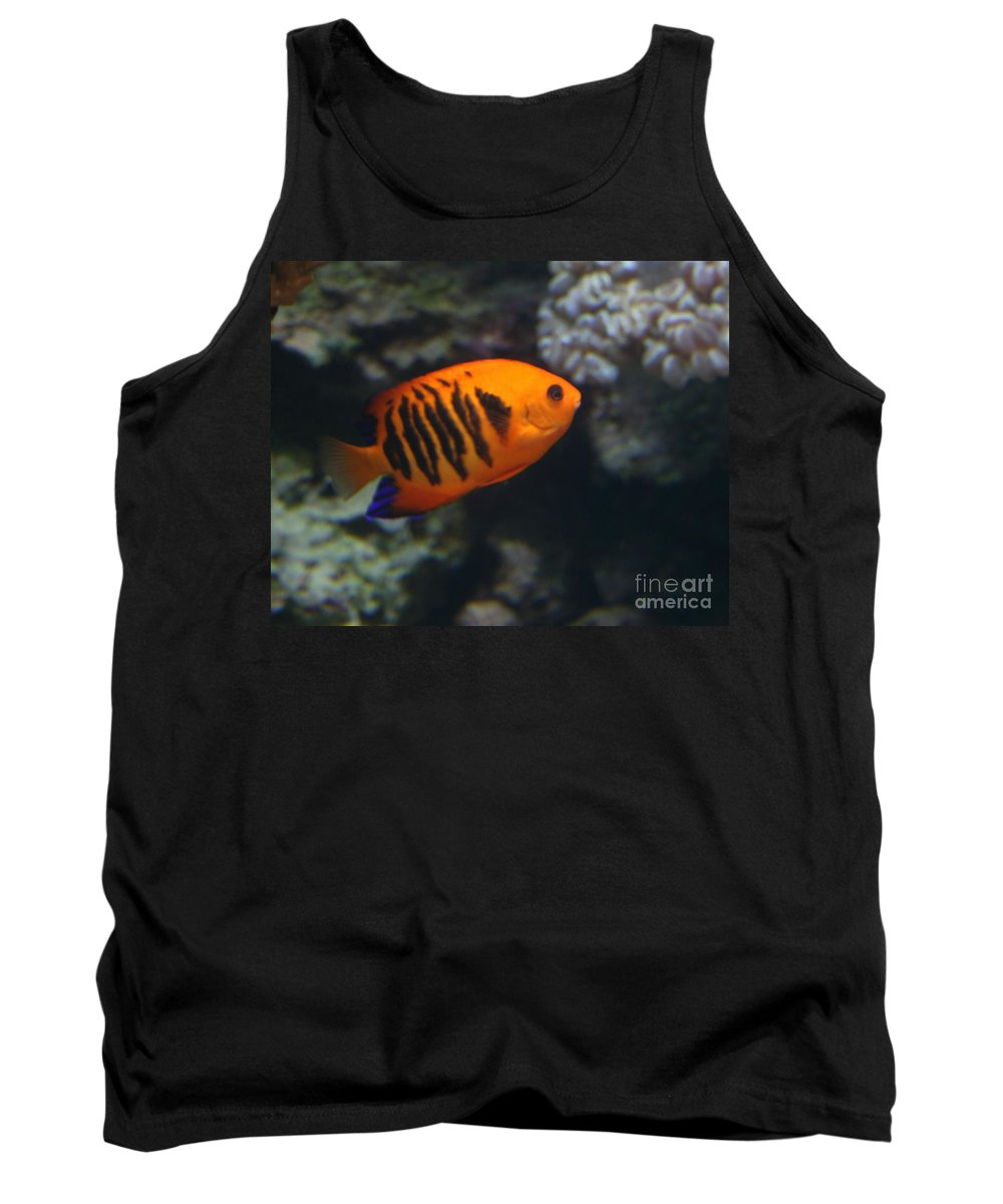 Orange Tank Top featuring the photograph Orange Fish by Dawn Downour