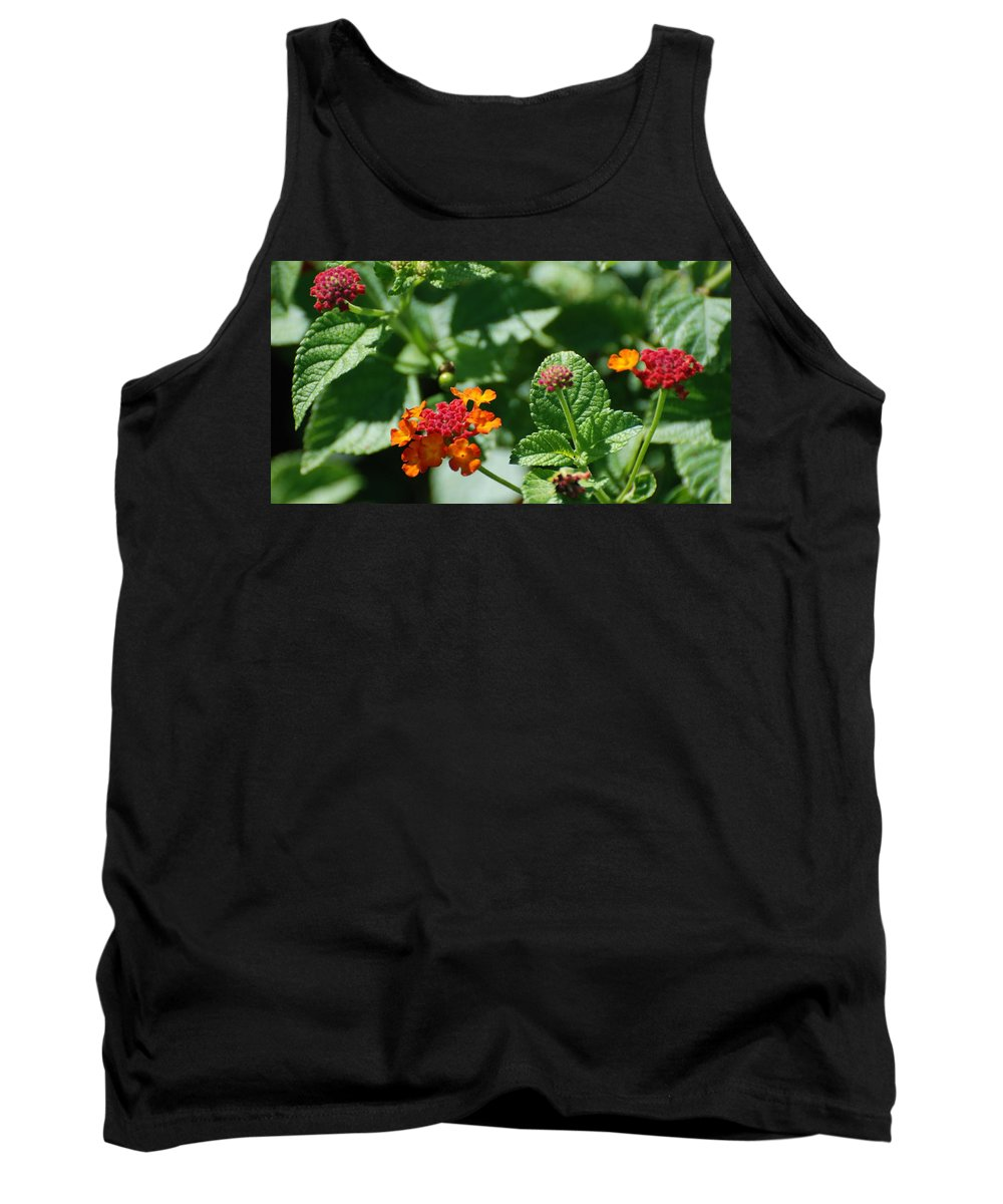 Orange Tank Top featuring the photograph Orange Red Flowers by Rob Hans