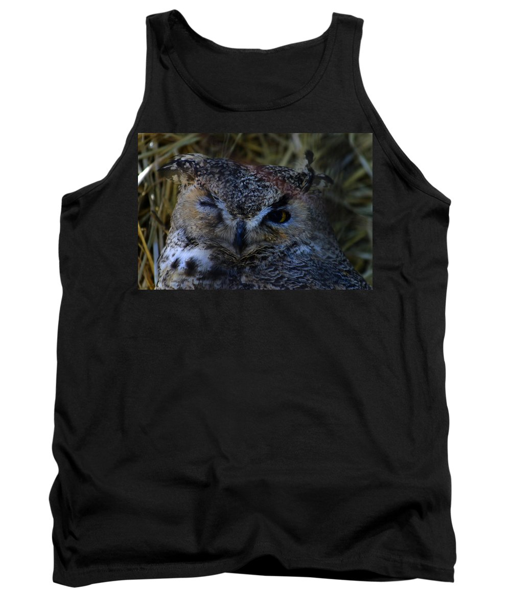 Owl Tank Top featuring the photograph Owl by Anthony Jones