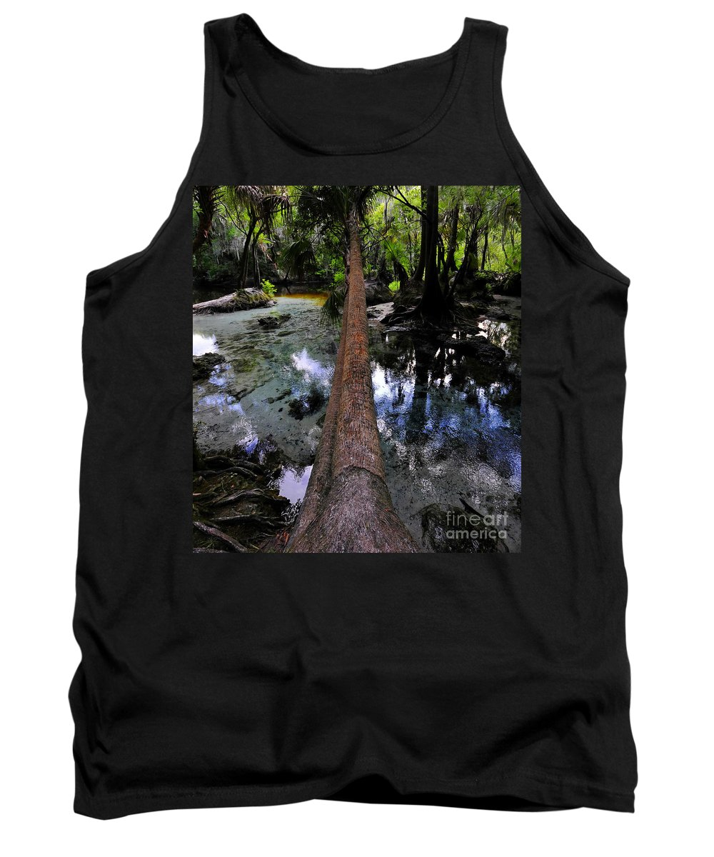 Spring Tank Top featuring the photograph Palm Over Spring by David Lee Thompson