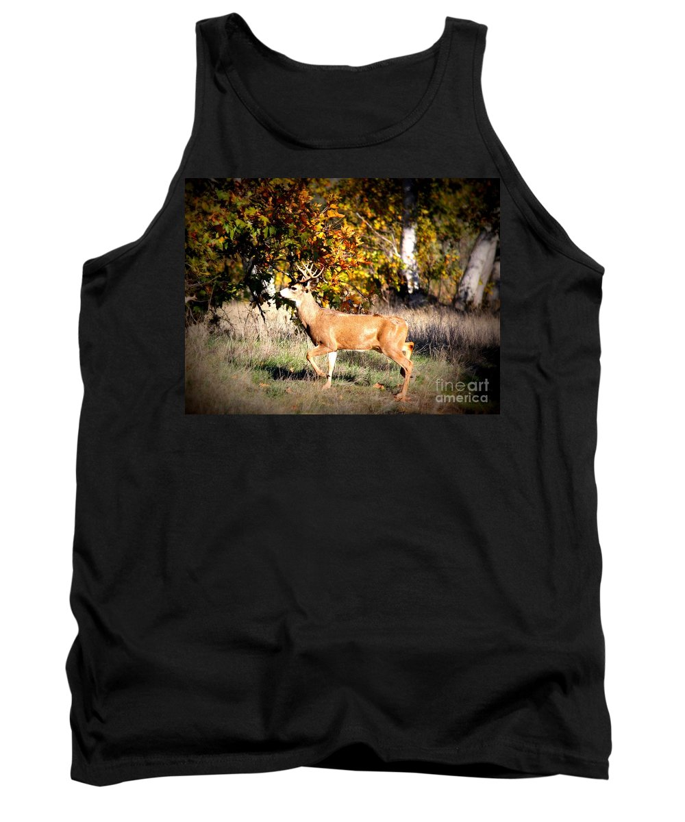 Animal Tank Top featuring the photograph Passing Buck In Autumn Field by Carol Groenen