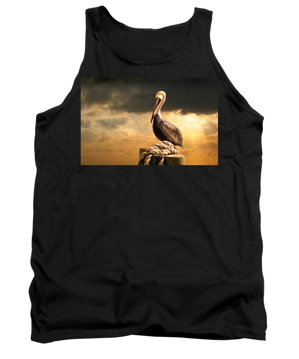 Pelican Tank Top featuring the photograph Pelican After A Storm by Mal Bray