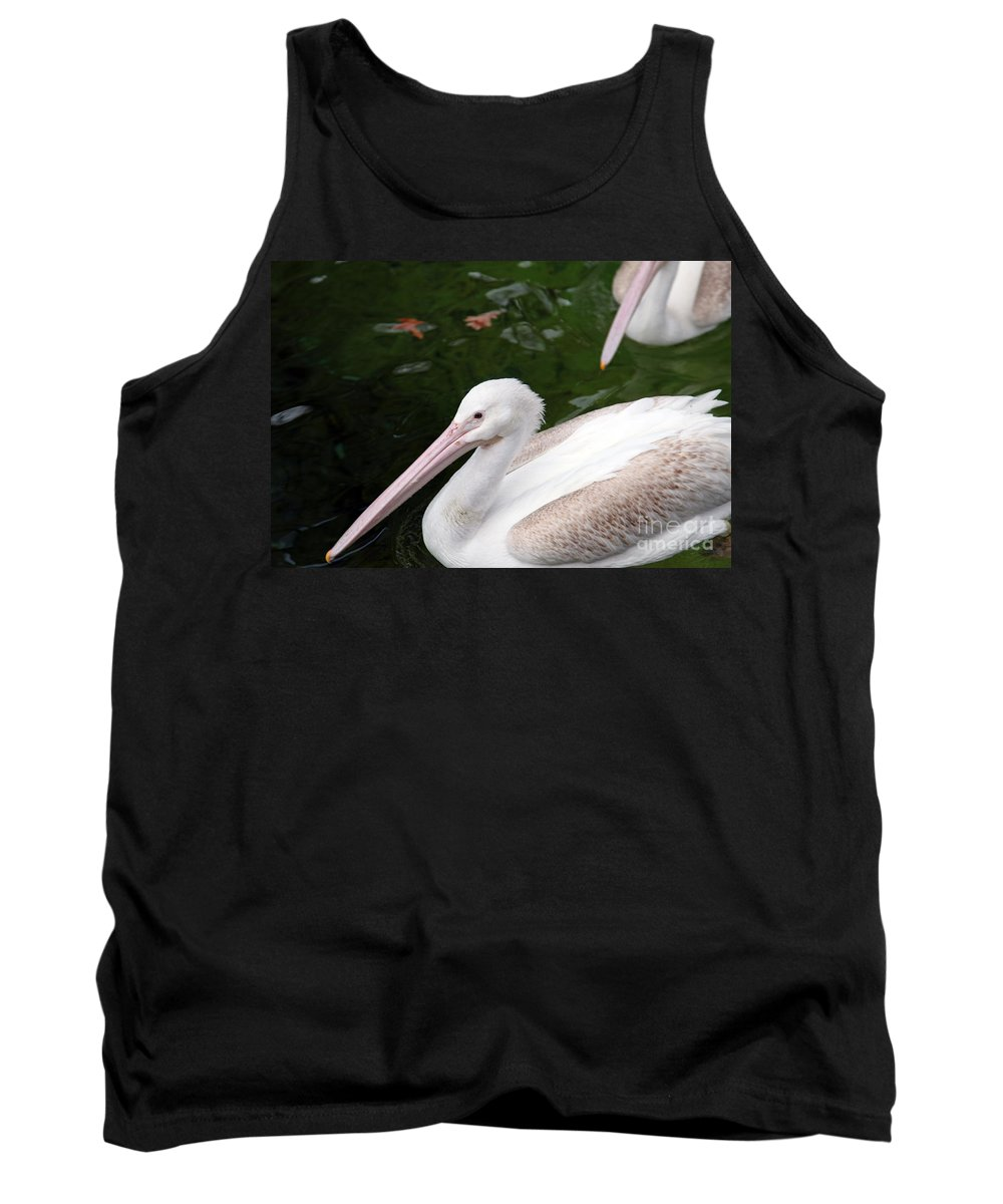 Pelican Tank Top featuring the photograph Pelican by Amanda Barcon