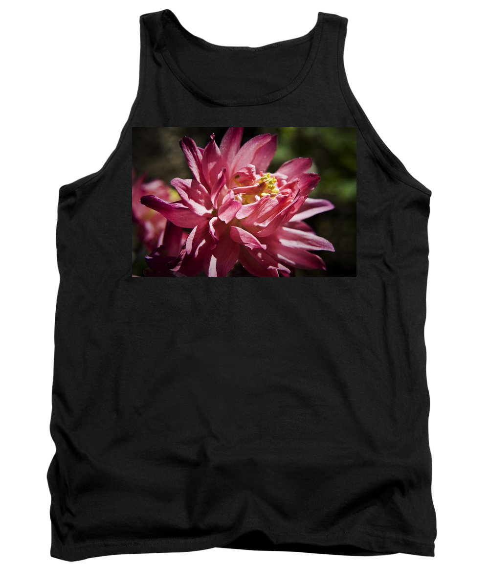 Columbine Tank Top featuring the photograph Pink Columbine by Teresa Mucha