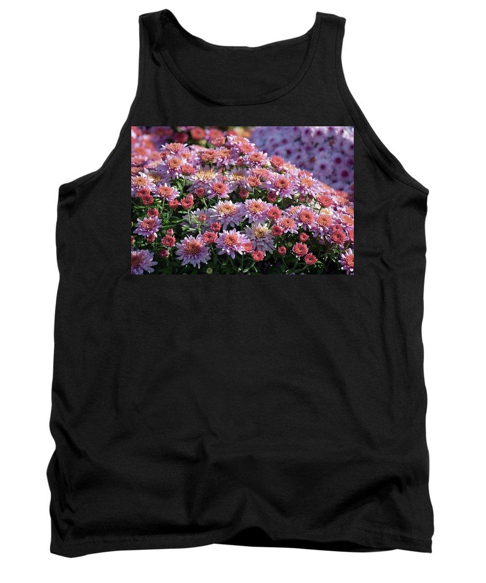 Flower Tank Top featuring the photograph Pink Mums by Linda Benoit