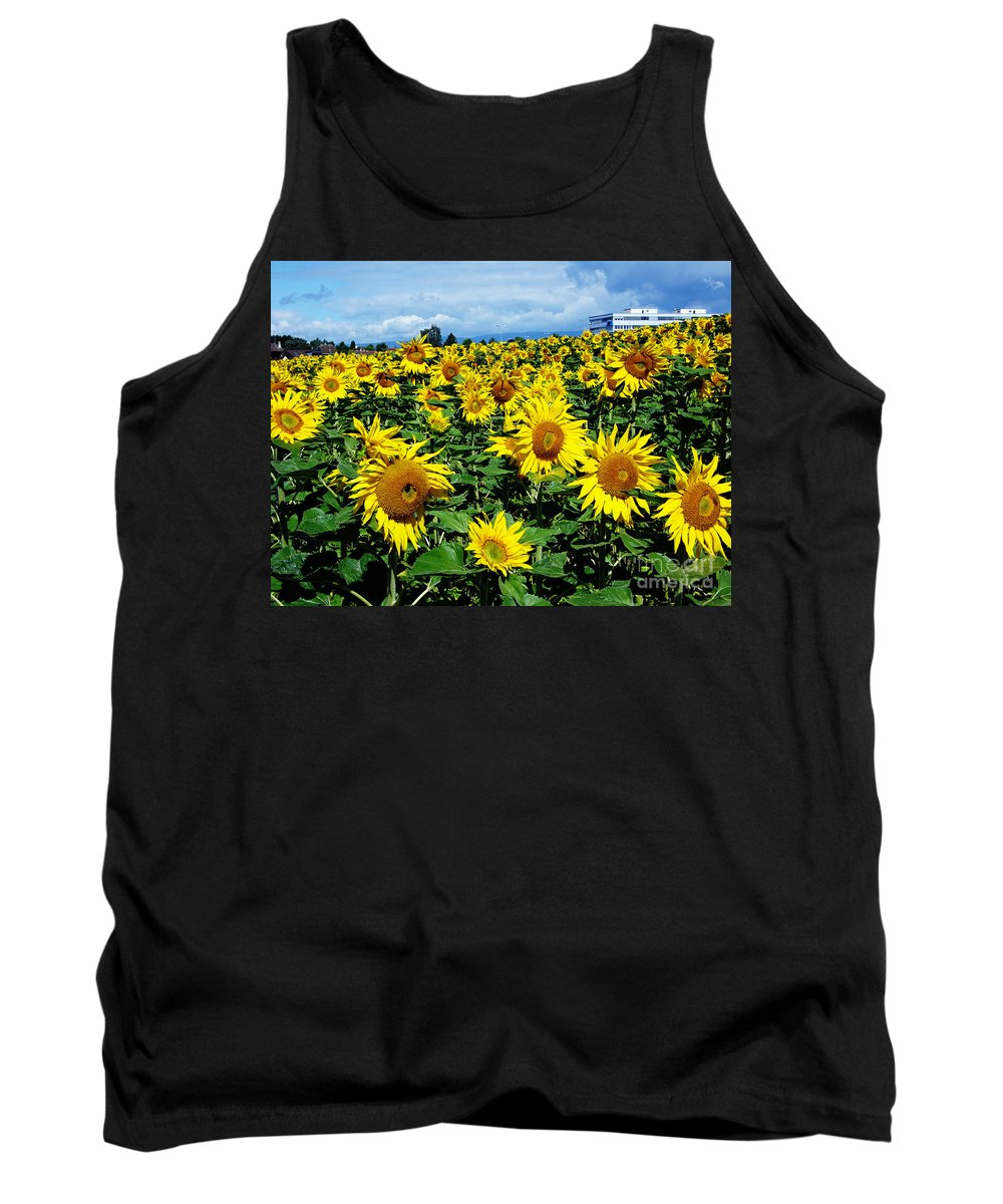 Sunflowers Tank Top featuring the photograph Pleasant Warmth by Jeff Barrett