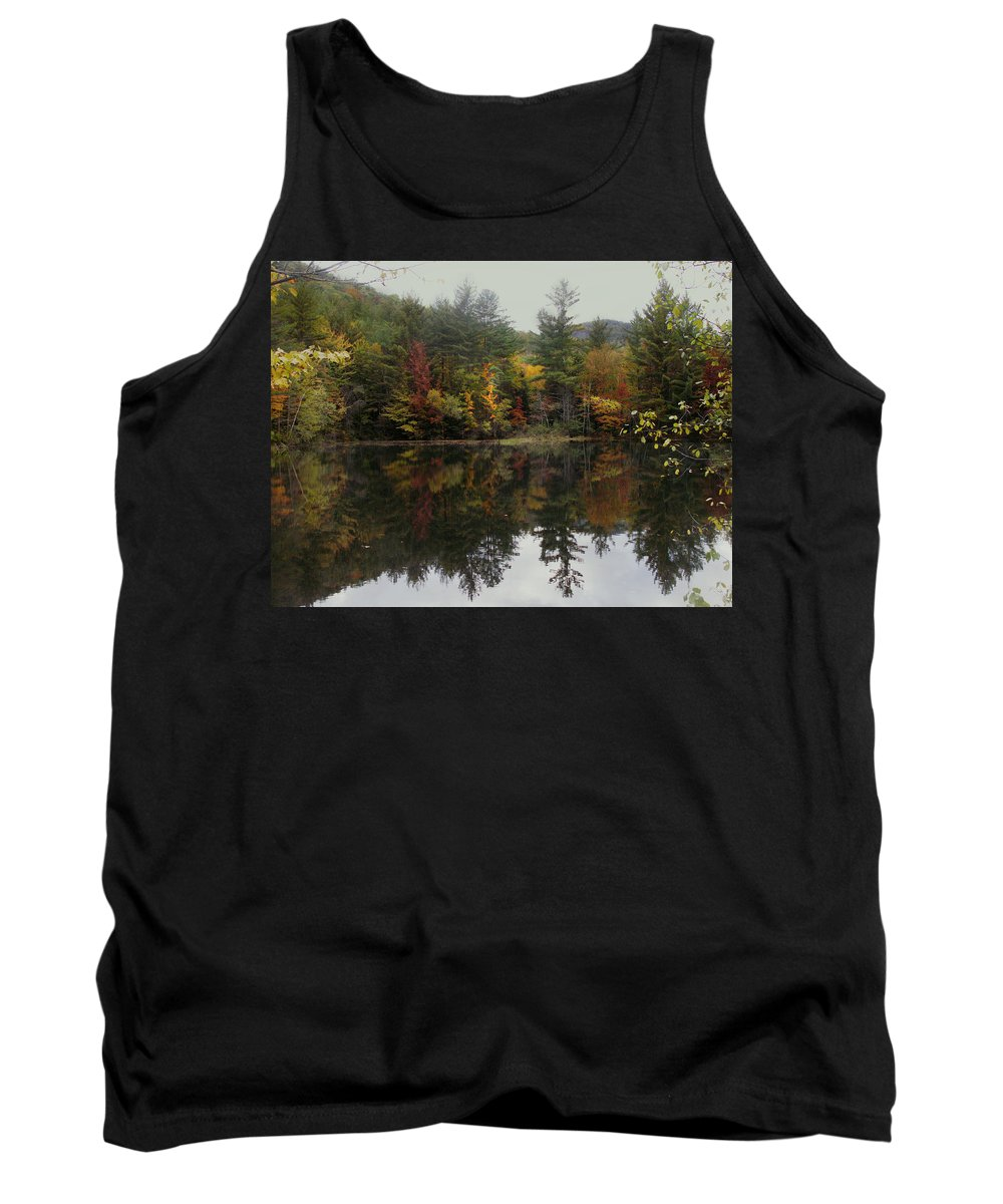 Landscape Tank Top featuring the photograph Pond In Jackson by Nancy Griswold
