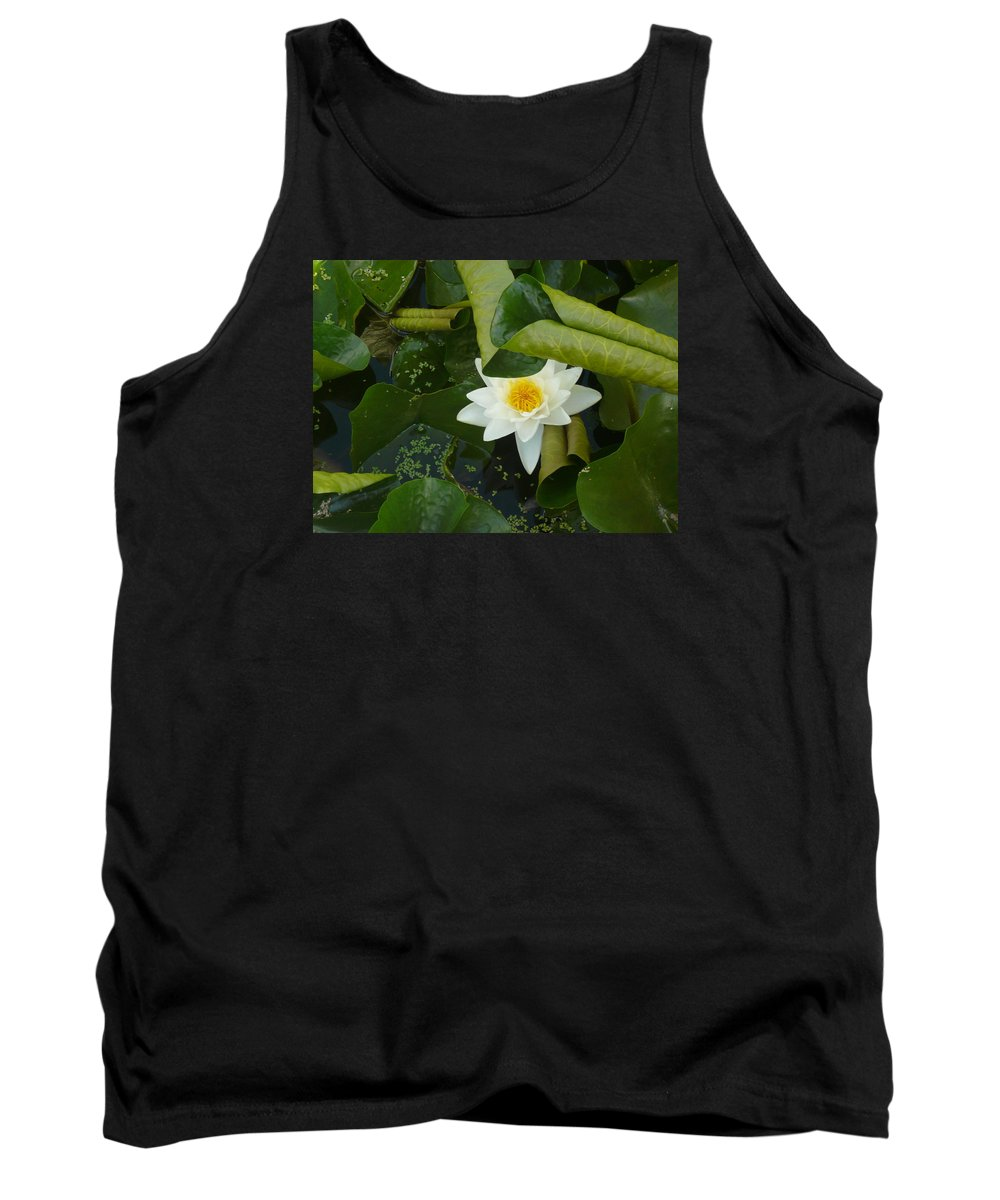 Lily Pond Tank Top featuring the photograph Purity by Connie Young