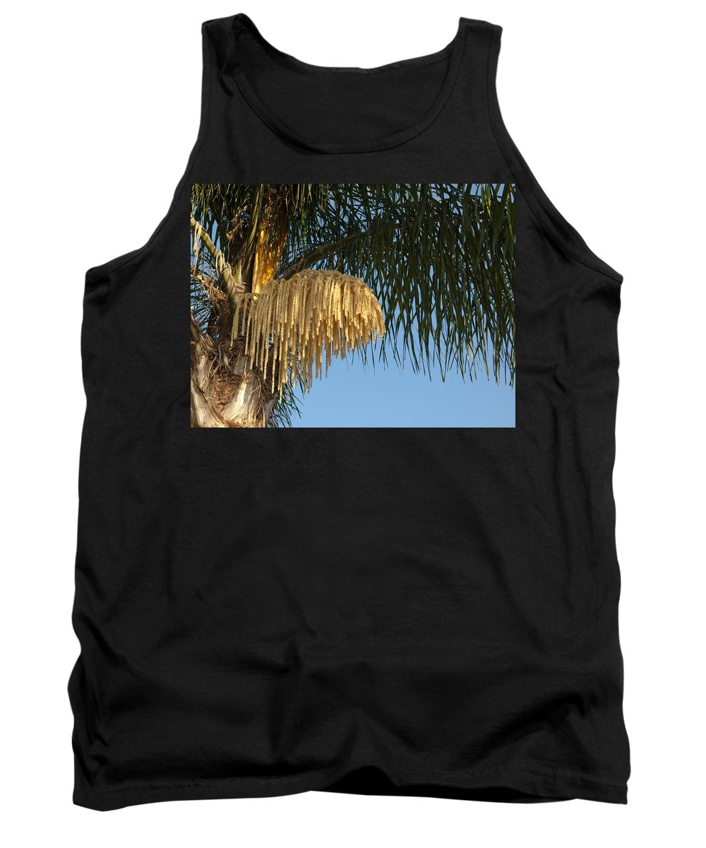 Florida; Royal; Queen; Palm; Tree; Syagrus; Romanzoffiana; Palms; Flower; Flowering; Bloom; Blooming; Summer; Trunk; Leaves; Flowers; Fronds; Everglades; Melbourne; Beach; Brevard; Plant; Plants; Foliage; Ornamental; Grow; Growing; Male; Female Tank Top featuring the photograph Queen Palm Tree Flower by Allan Hughes