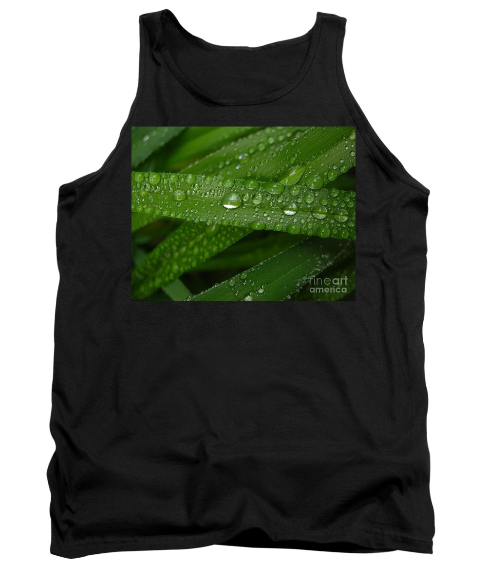 Rain Tank Top featuring the photograph Raindrops On Green Leaves by Carol Groenen