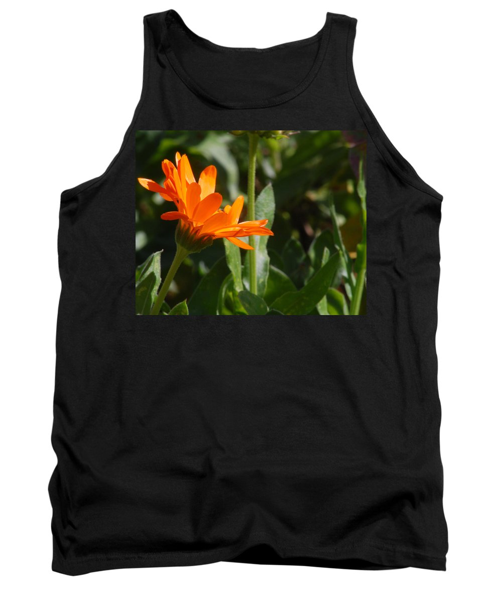 Orange Daisy Tank Top featuring the photograph Reach For The Sun 2 by Amy Fose
