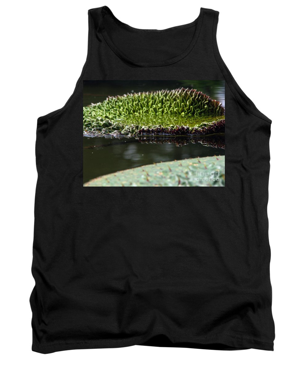 Lillypad Tank Top featuring the photograph Ready To Spread by Amanda Barcon