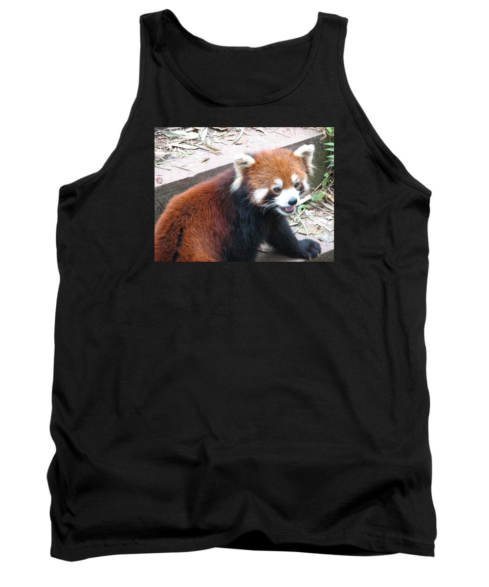 Bear Tank Top featuring the photograph Red Panda by Carla Parris