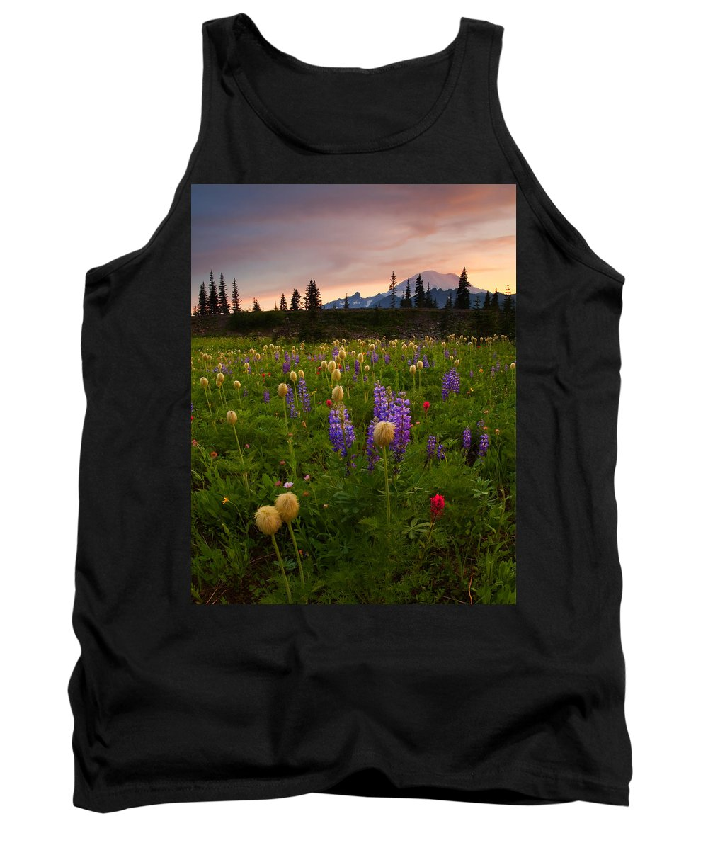 Anenome Tank Top featuring the photograph Red Sky Meadow by Mike Dawson