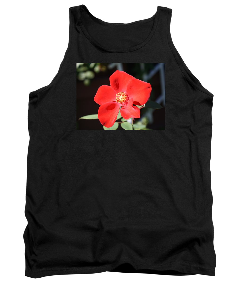 Rose Tank Top featuring the photograph Red Velvet by Mary Beglau Wykes