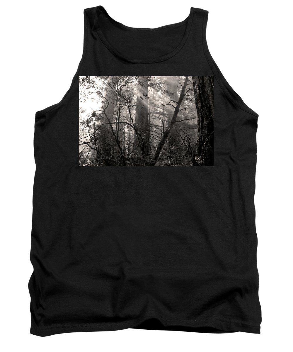 Redwoods Tank Top featuring the photograph Redwood Mystery by Betty LaRue