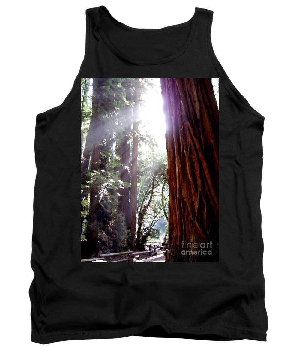 Redwoods Tank Top featuring the photograph Redwood Sunlight by Mary Rogers
