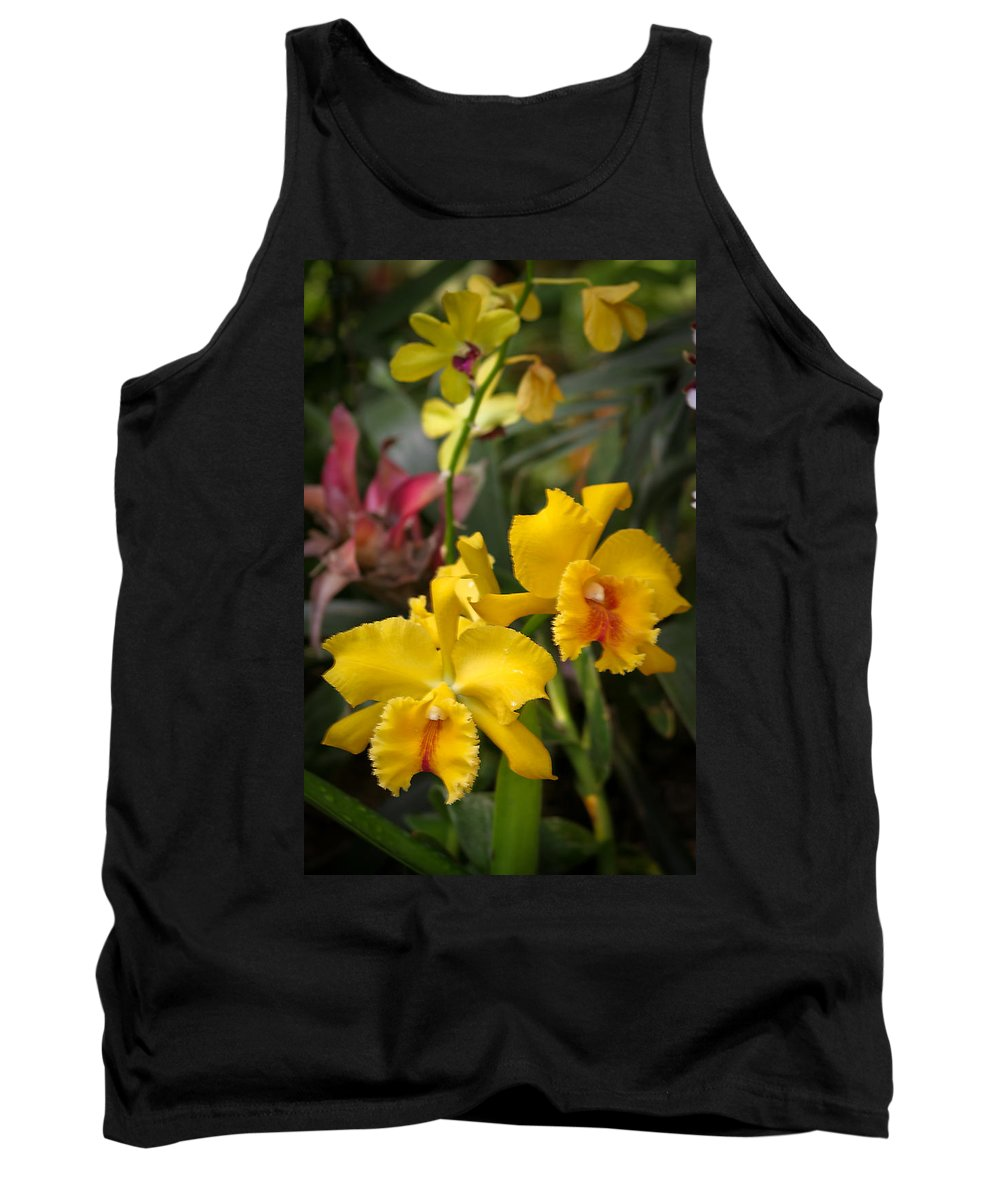 Mount Rushmore Tank Top featuring the photograph Reptile Gardens IIi by Mike Oistad