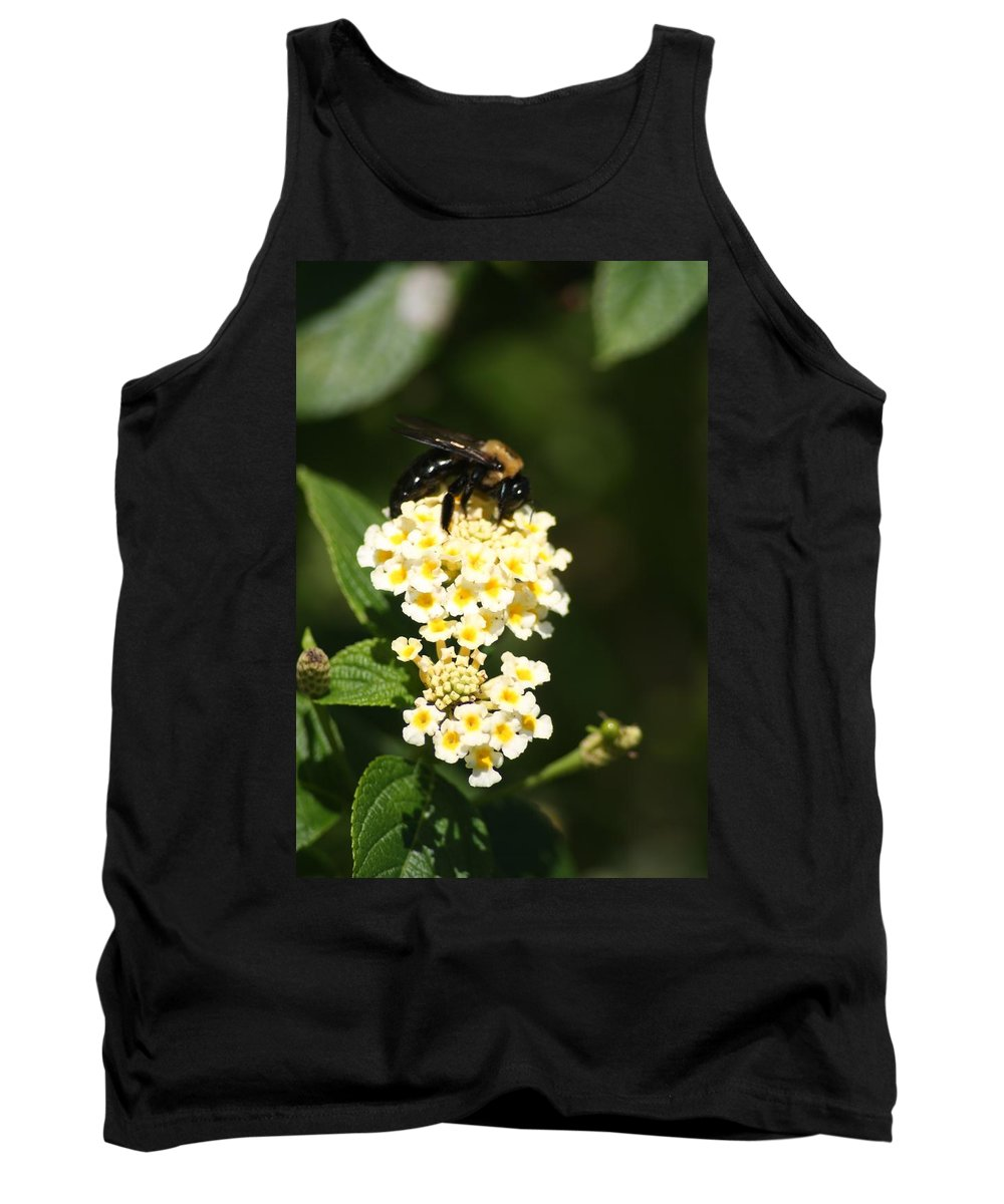 Bee Tank Top featuring the photograph Resting Carpenter by John W Smith III