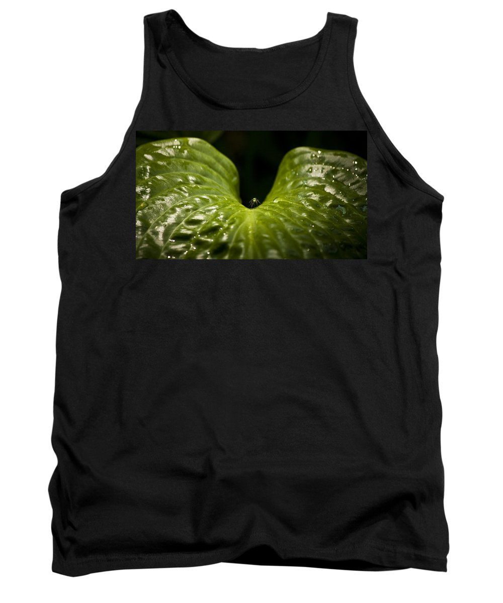 Rest Tank Top featuring the photograph Resting Spot by Teresa Mucha