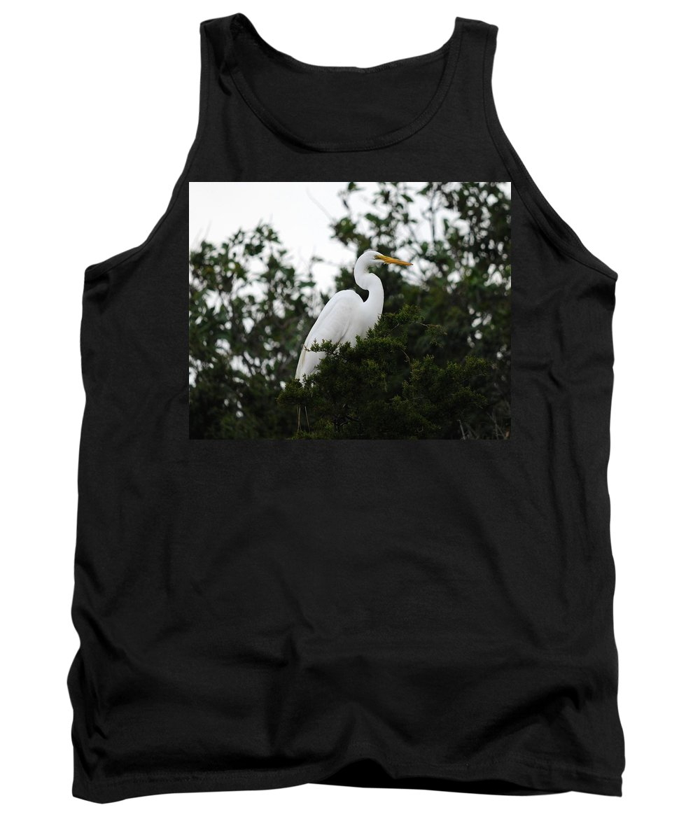 Great Egret Tank Top featuring the photograph Roosting Egret by Al Powell Photography USA