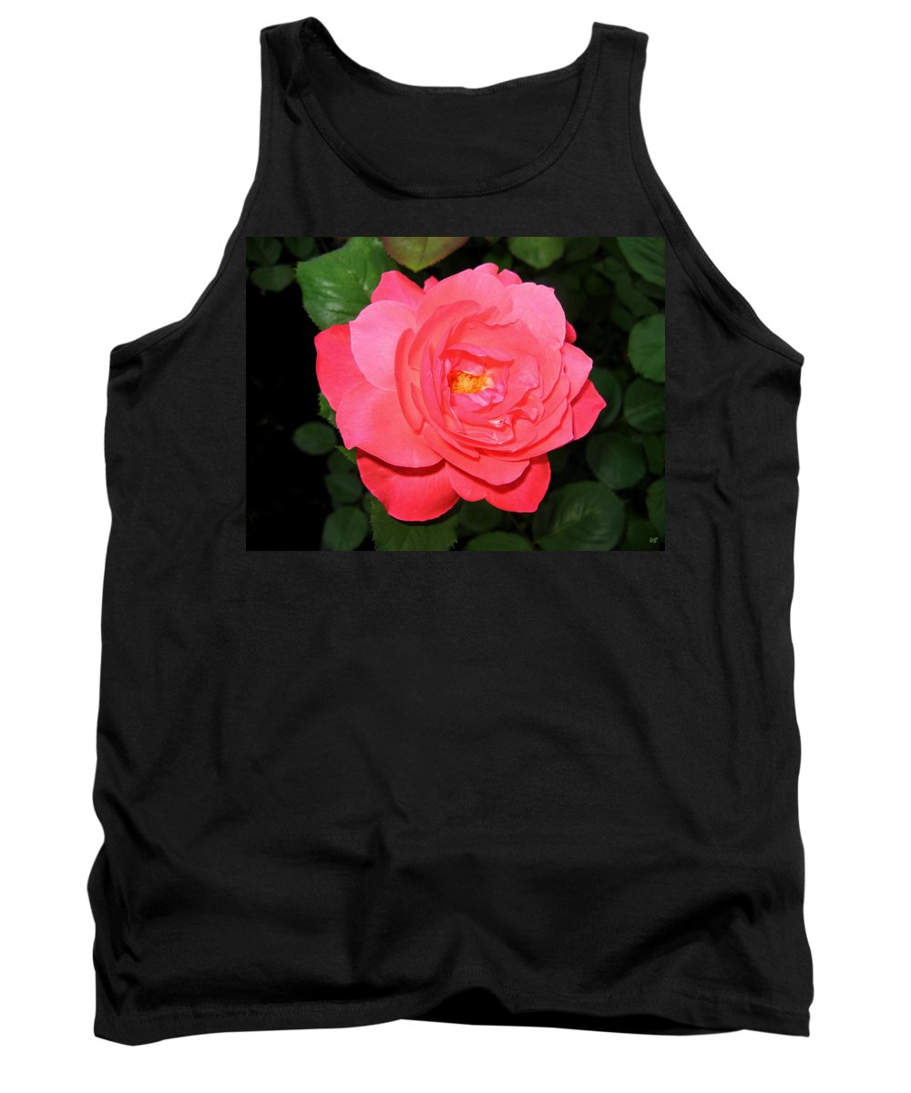 Rose Tank Top featuring the photograph Roses 12 by Will Borden