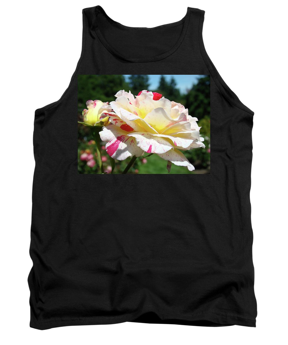 Rose Tank Top featuring the photograph Roses White Pink Yellow Rose Flowers 3 Rose Garden Art Baslee Troutman by Baslee Troutman