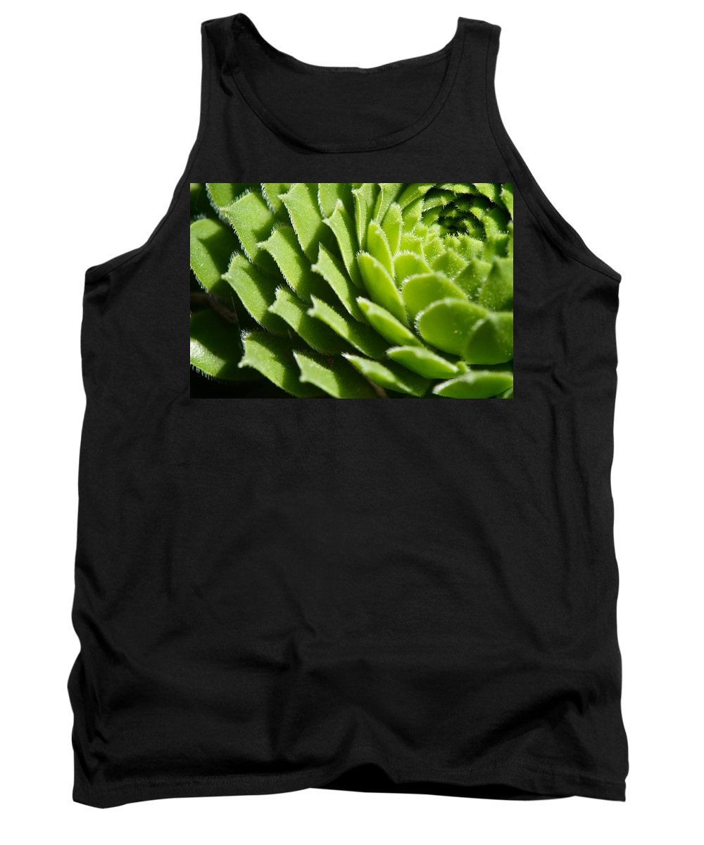 Hen And Chicks Tank Top featuring the photograph Rosette by Lisa Knechtel