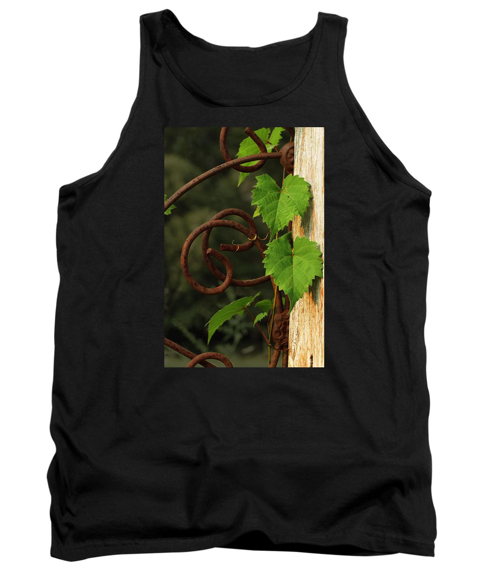 Grape Vine Tank Top featuring the photograph Rust Vine by Grant Groberg
